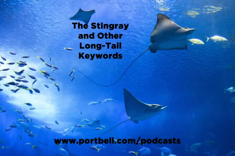 The Stingray and other Long-Tail SEO Keywords